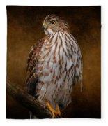 Coopers Hawk Portrait 1 Fleece Blanket