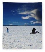Copano Bay Sunset Flight Fleece Blanket
