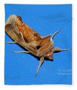 Copper Crest Shield Moth Fleece Blanket