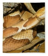Copperhead Snake Fleece Blanket