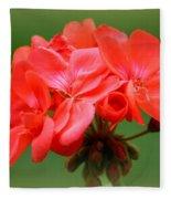 Coral Geraniums Fleece Blanket