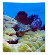 Corals Underwater Fleece Blanket