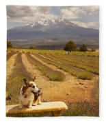 Corgi And Mt Shasta Fleece Blanket