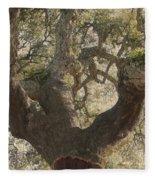 Cork Oak Tree Fleece Blanket
