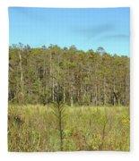 Corkscrew Swamp 1 Fleece Blanket