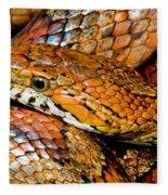 Corn Snake Fleece Blanket