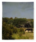Corolla Pony Fleece Blanket