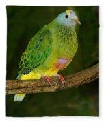 Coronated Fruit Dove Fleece Blanket