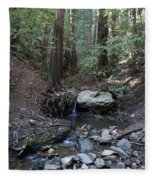 Corte Madera Creek On Mt. Tam In 2008 Fleece Blanket