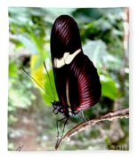 Costa Rican False Postman Butterfly Fleece Blanket