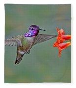 Costas Hummingbird At Flower Fleece Blanket