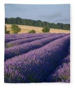 Cotswolds Lavender Fleece Blanket