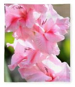 Cotton Candy Gladiolus Fleece Blanket
