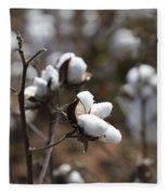 Cotton Southern Gold Fleece Blanket
