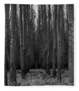 Cottonwood Alley Monochrome Fleece Blanket
