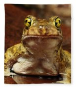 Couchs Spadefoot Toad Fleece Blanket