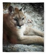 Cougar Country Fleece Blanket