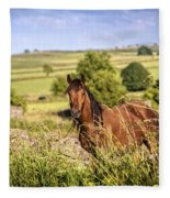 Countryside Horse Fleece Blanket