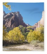 Court Of The Patriarchs Fleece Blanket