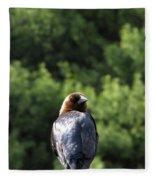 Cow Bird Fleece Blanket