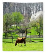 Cow Grazing In Pasture In Spring Fleece Blanket