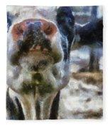 Cow Kiss Me Photo Art Fleece Blanket