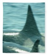 Cow Orca And Her Calf Fleece Blanket