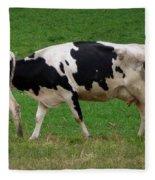 Cow Path Fleece Blanket