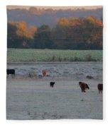 Cows At Sunrise Fleece Blanket