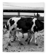 Cows Coming And Going Fleece Blanket