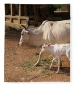 Cows In Hampi Fleece Blanket