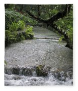 Coyaba River Gardens 6 Fleece Blanket