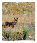 Coyotes Fleece Blanket