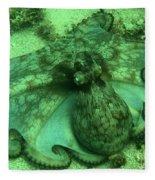 Cozumel Octopus Fleece Blanket