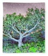 Craggy Gardens North Carolina Blue Ridge Parkway Autumn Nc Sceni Fleece Blanket
