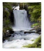 Crandel Creek Falls Fleece Blanket