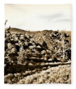 Craters Of The Moon1 Fleece Blanket