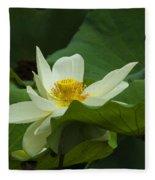 Cream Colored Lotus Fleece Blanket