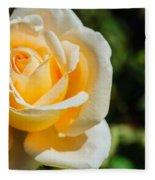 Cream Rose Fleece Blanket
