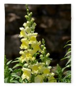 Creamy Yellow Snapdragon Fleece Blanket