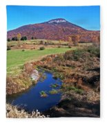 Creek In The Valley Fleece Blanket