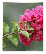 Crepe Myrtle Branch Fleece Blanket