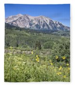 Crested Butte Scenery Fleece Blanket