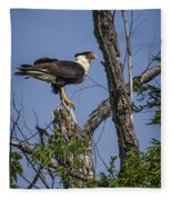 Crested Caracara Fleece Blanket