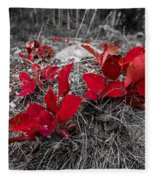 Crimson Foliage Fleece Blanket