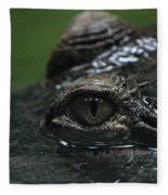 Croc's Eye-1 Fleece Blanket