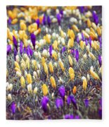 Crocus Field Fleece Blanket