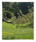 Crooked Apple Tree Fleece Blanket