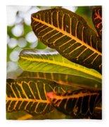 Croton Fleece Blanket