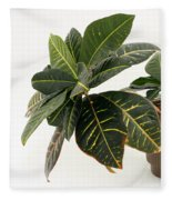 Croton Houseplant Fleece Blanket
